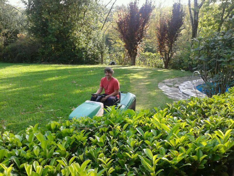 Mantenimiento de jardines jardiner a donostia lorezaintza for Mantenimiento de jardines