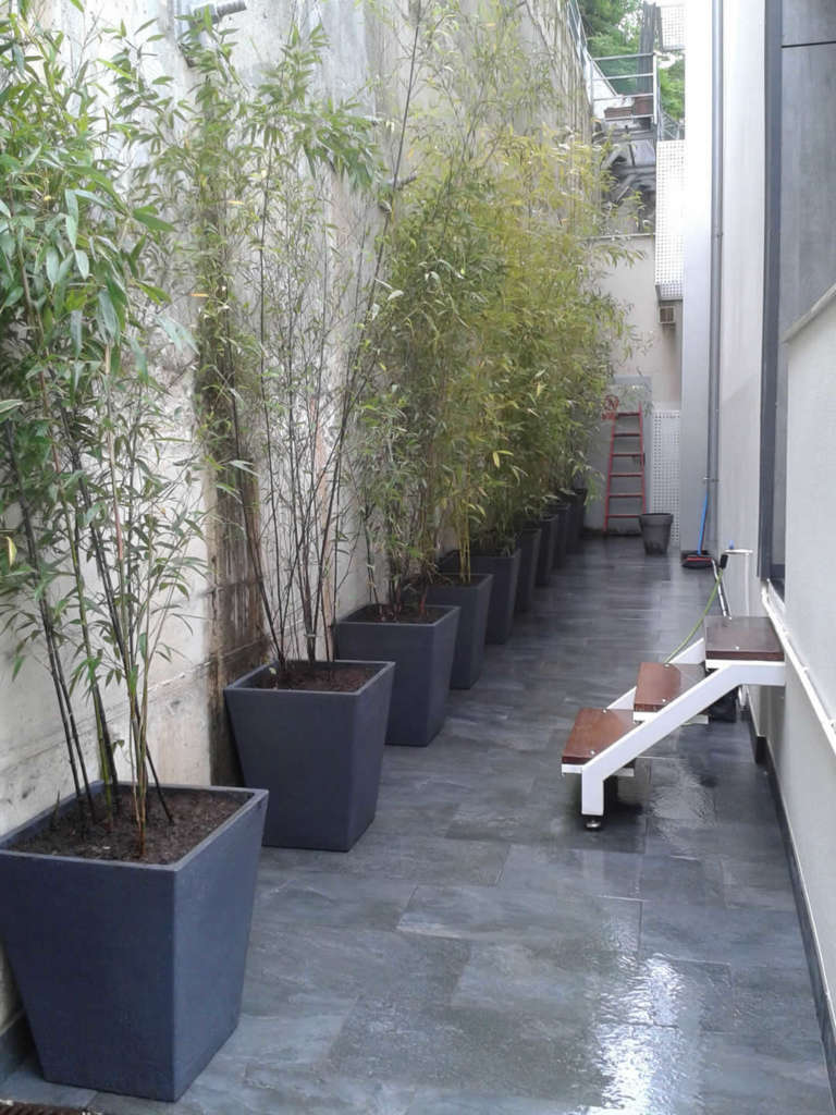 Jardiner a decoracion 20140604 123316 jardiner a for Decoracion jardineria