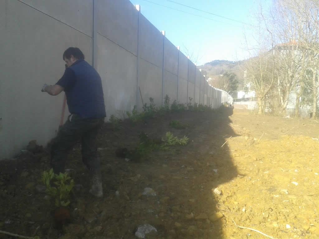 Plantación laureles y cesped en autopista A8