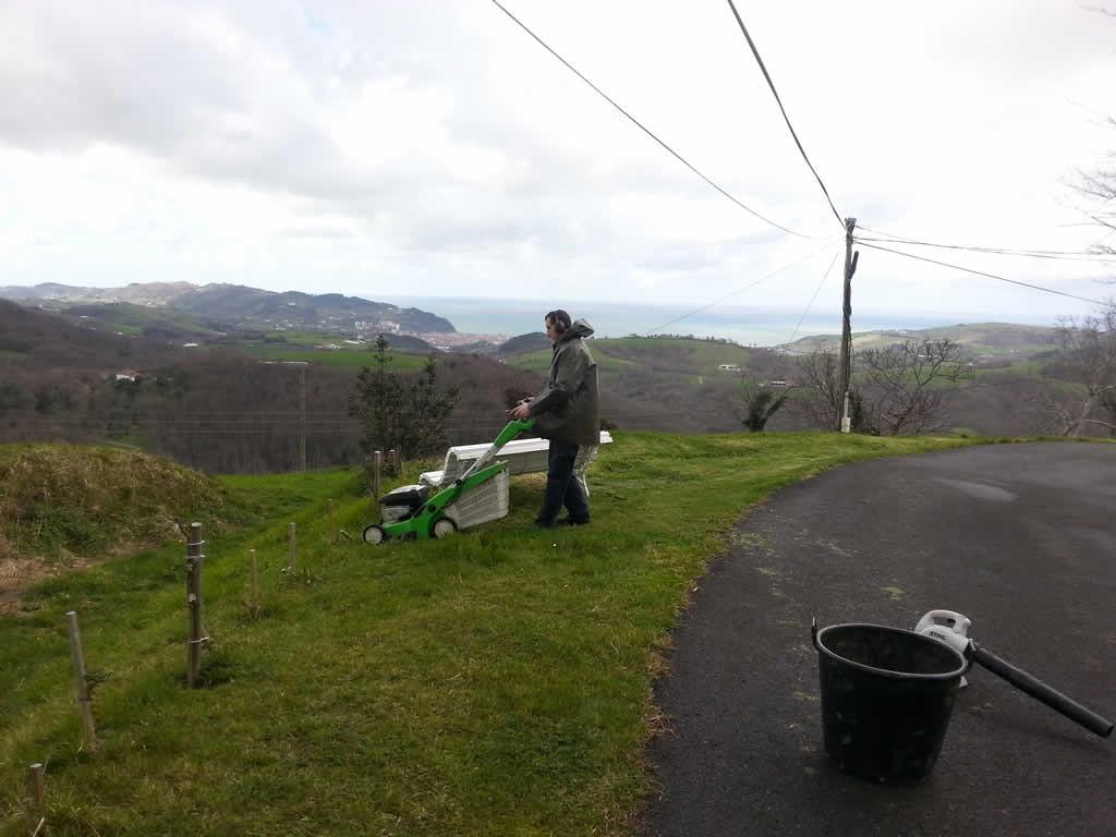 Mantenimiento jardines en Aia