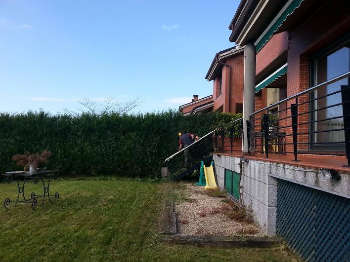 trabajos de jardineria en Donostia