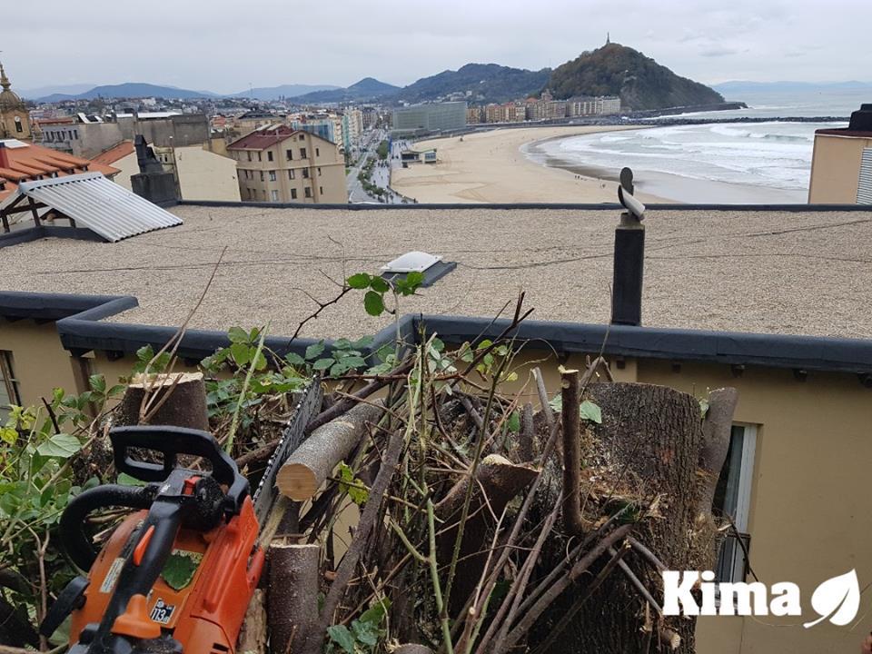 Desbrozea eta garbiketa Gros auzoan/Mantenimiento,desbroce y limpieza de terreno en Gros,Donostia